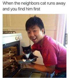 Kép: Ázsiai férfi tepsivel, amelyben macska van. Felirat: When the neighbors cat runs away and you find him first